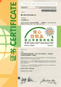 OKtex中文版